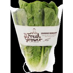 Photo of The Fresh Grower Fancy Lettuce Caesar Romaine