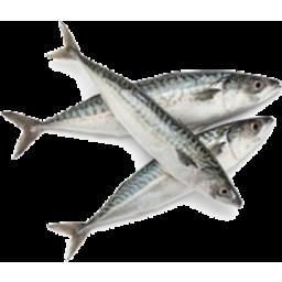 Photo of Mackerel Pickeled