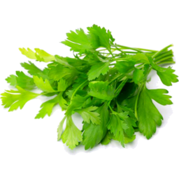 Photo of Fresh Herbs Italian Parsley Each