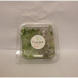 Photo of Nz Microgreen Snack Pack