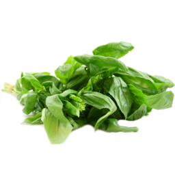 Photo of Herb Basil Bunch