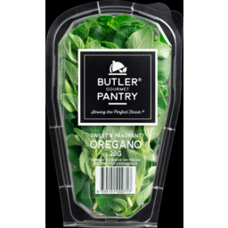 Photo of Butler Pantry Oregano Punnet 20gm