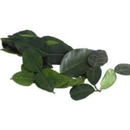Photo of Kaffir Lime Leaves 10g
