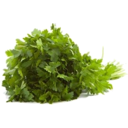 Photo of Parsley - Flat