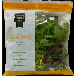 Photo of Tasman Bay Salad Daze Bag 100g