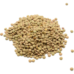 Photo of Bulk Lentils French Green Organic