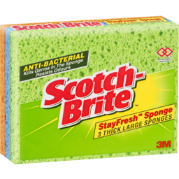 Photo of Scotch-Brite® Stayfresh Sponges Thick Large 3 Pack