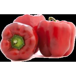 Photo of Capsicum Red
