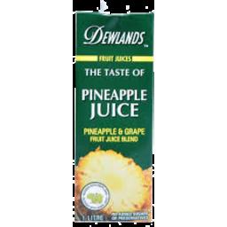 Photo of Dewlands Juice Pineapple 1l