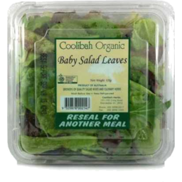 Photo of Organic Prepacked Salad Mix