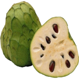 Photo of Cherimoya (Custard Apple)