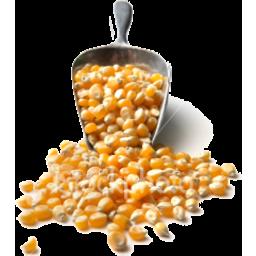 Photo of Popping Corn