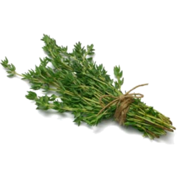 Photo of Thyme Bunch