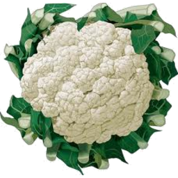Photo of Cauliflower