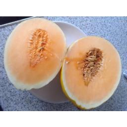 Photo of Melon Candy 1/2 Ea