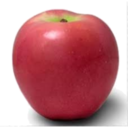 Photo of Loose Apples Pacific Rose