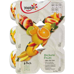 Photo of Yoplait Orchard Fruits 6x175g