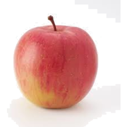 Photo of Apple Fuji Lrg