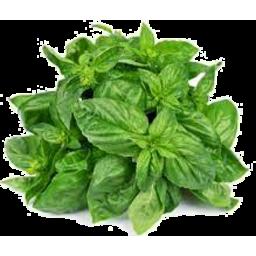 Photo of Herb Basil P/P Punnet