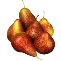 Photo of Corella Pears Kg