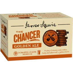 Photo of James Squire The Chancer Golden Ale 345ml 24 Pack