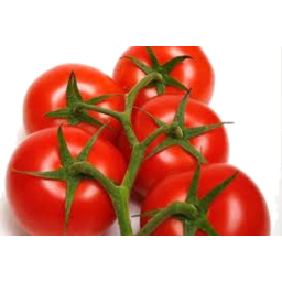 Photo of Tomatoes Truss Kg