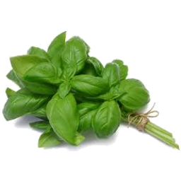 Photo of Butler Pantry Basil Punnet 20gm