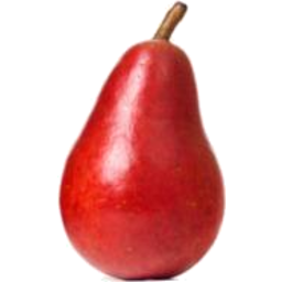Photo of PEARS RED LANTERN