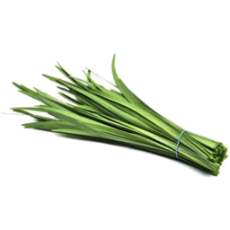 Photo of Garlic Chives