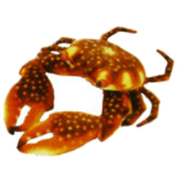 Photo of Plush Brown Crab 16cm