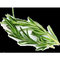 Photo of Fresh Rosemary