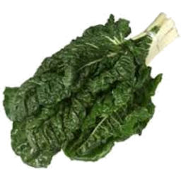 Photo of Silverbeet - Organic