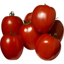 Photo of Tomatoes Roma Pre Pack 1kg