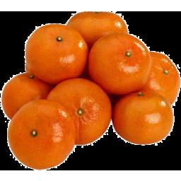 Photo of Mandarin Daisy