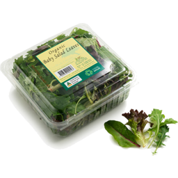 Photo of Lettuce - Salad Mix - 100 - 120gm Punnet