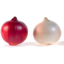 Photo of Onions Red Or White Salad