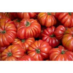 Photo of Tomatoes Heirloom In Tray