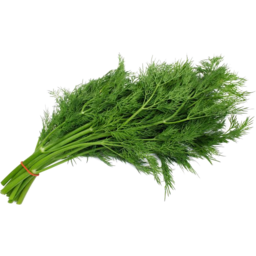 Photo of Herbs Dill