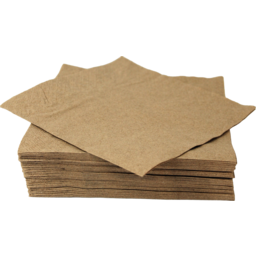 Photo of Eco Soulife Recycled Paper Napkins 50 Pack