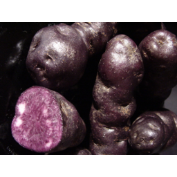 Photo of Potatoes Gourmet 1.5kg New Season