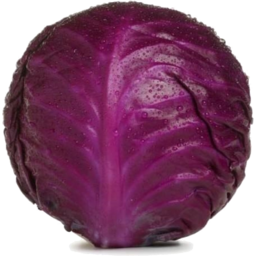 Photo of Red Cabbage Whole
