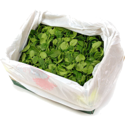 Photo of Baby Spinach 1.5kg Box