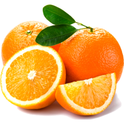 Photo of Oranges Navel Small