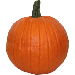 Photo of Pumpkin Halloween per kg