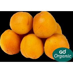 Photo of Organic Apricots Kg