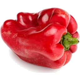Photo of Capsicum - Red