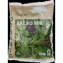 Photo of Organic Prepack Salad Mix
