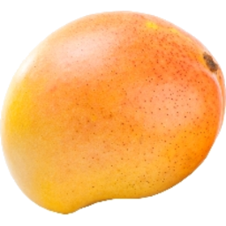 Photo of Mango