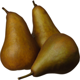 Photo of Pears Beurre Bosc Kg