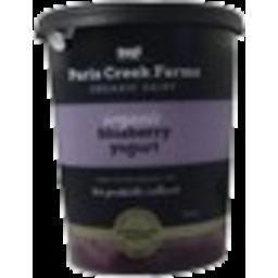 Photo of Paris Creek - Yoghurt - Blueberry - 500g